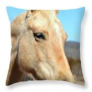 A Gentle Soul Throw Pillow