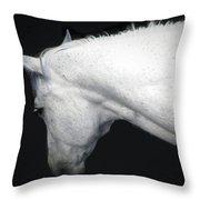 A Gentle Spirit Throw Pillow