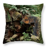 A Giant Falls - Life Emerges Throw Pillow