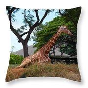 A Giraffe Rests In Honolulu Throw Pillow
