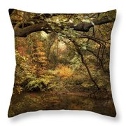A Glimpse Of Autumn Throw Pillow