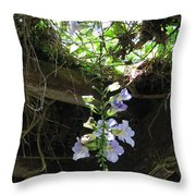 A Glimpse Of Hope Throw Pillow