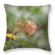 A Glimpse Of Spring To Come Throw Pillow