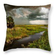 A Glow On The Marsh Throw Pillow