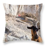 A Goat Hanging Out At The Base Throw Pillow