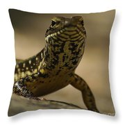 A Golden Skink Throw Pillow