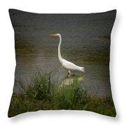 A Grassland Beauty Throw Pillow