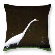A Great Egret On Hilton Head Island Throw Pillow