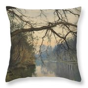 A Great Tree On A Riverbank Throw Pillow