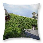 A Green House Throw Pillow