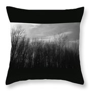 A Grey Point Of View Throw Pillow