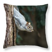 A Grey Squirrel Making It S Way Throw Pillow