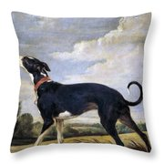 A Greyhound Lurking Throw Pillow