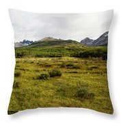 A Group Of Hikers Walk Throw Pillow
