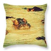A Group Of Hippos In A River. Tanzania Throw Pillow