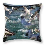 A Group Of Pelicans Throw Pillow