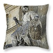 A Guardian Close-up - 1  Throw Pillow