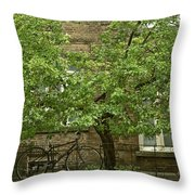A Guardian In The Rain Throw Pillow