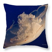 A Hat Never To Be Worn  Throw Pillow by Angela A Stanton