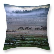 A Heard Of Elk Graze In A Misty Meadow Throw Pillow