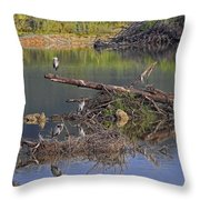 A Hedge Of Heron Throw Pillow