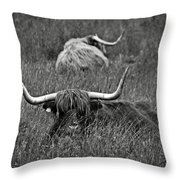 A Highland Cattle In The Scottish Highlands Throw Pillow