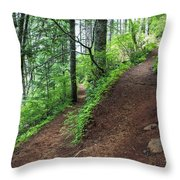 A Hiking Trail Goes Up Saddle Mountain Throw Pillow