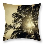 A Hint Of Sunshine Throw Pillow