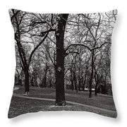 A Hint Of Winter Throw Pillow