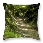 A Hole In The Forest Throw Pillow by Bob Phillips