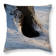 A Hollow In A Tree In Winter Throw Pillow