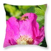 A Hornet And Beach Rose Throw Pillow