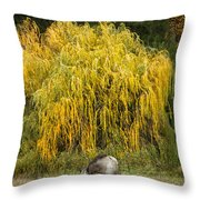 A Horse And A Willow Tree Throw Pillow