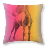 A Horse Baby Is A Fragile Creature, Ready To Run For Its Life  Throw Pillow