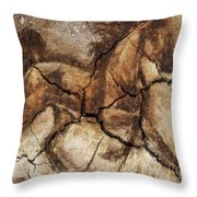 A Horse - Cave Art Throw Pillow