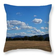 A June Panorama In Southern Oregon Throw Pillow