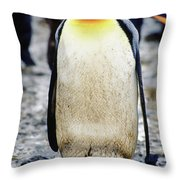 A King Penguin Holds Its Egg Throw Pillow