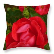 A Knockout Throw Pillow