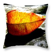 A Lantern Lit By Sunlight Throw Pillow