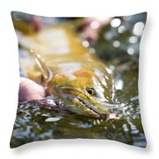 A Large Cutthroat Being Released Throw Pillow
