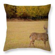 A Large Whitetail Buck Stairs Throw Pillow