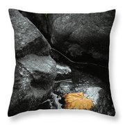 A Leaf On The Rocks Throw Pillow