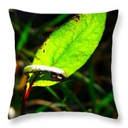 A Leaf... Throw Pillow