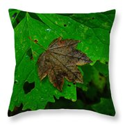 A Leaf Upon A Leaf Throw Pillow