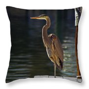 A Leg To Stand On Throw Pillow