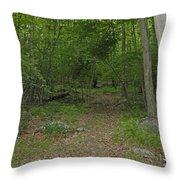 A Leisurely Stroll Through The Putnam County Veteran Memorial Park Woods Throw Pillow