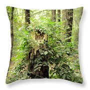 A Leprechaun's Hideout Throw Pillow