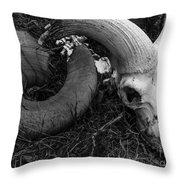 A Life Come And Gone Throw Pillow