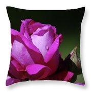 A Light Blue Rose  Throw Pillow