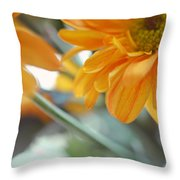 A Little Bit Sun In The Cold Time I Throw Pillow